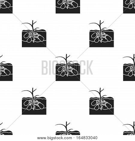 Potato icon in black style isolated on white background. Plant pattern vector illustration.