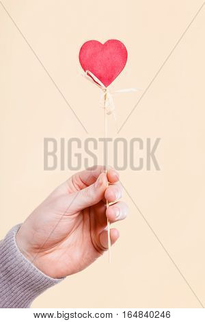 Symbolism romance relationship affection valentines concept. Person holding heart on stick. Someone presenting love symbol on pole.
