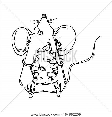 Cute mouse eating cheese cartoon vector illustration