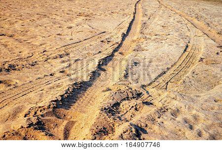 Road car tyre track on sandy beach