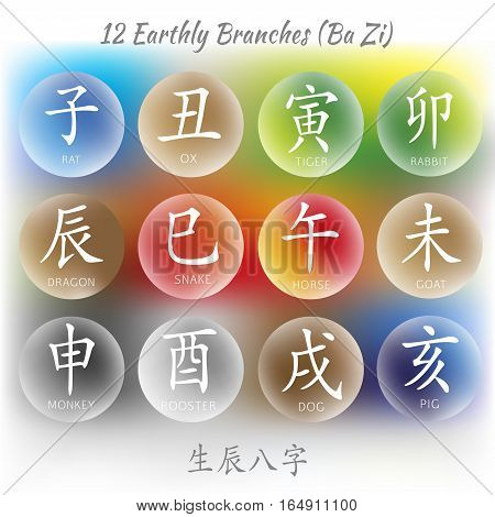 Set of symbols from chinese hieroglyphs. Translation of 12 zodiac animals branch, feng shui signs hieroglyph: Rat, Ox, Tiger, Rabbit, Dragon, Snake, Horse, Goat, Monkey, Rooster, Dog, Pig