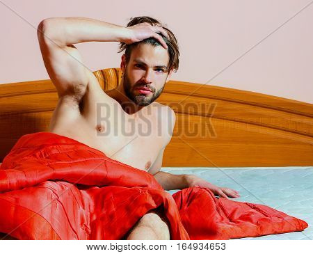 young handsome bearded sexy macho man with stylish beard lying naked on bed under red blanket and shows abs with muscle torso on athletic body