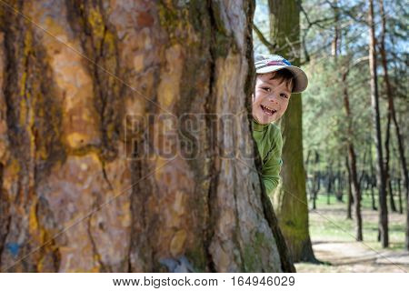 Adorable Little Boy Playing Hide And Seek