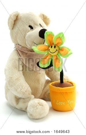 Teddy Bear And Flower