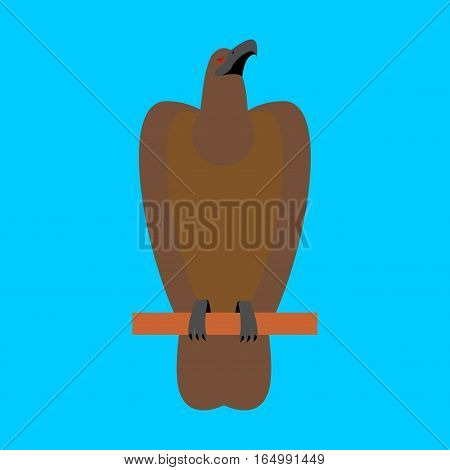 Hawk Isolated. Golden Eagle On Blue Background. Big Strong Bird