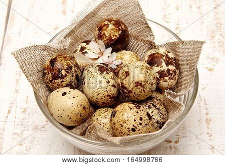 Spring quail eggs in a basket top view. Easter concept