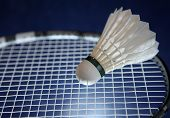 image of game-cock  - Badminton racket and shuttlecock - JPG