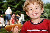 Постер, плакат: Мальчик проведение хот дог в окрестности пикник