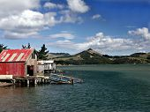 Otago Peninsula NZ