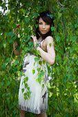 picture of birchwood  - beautiful girl in a birchwood - JPG