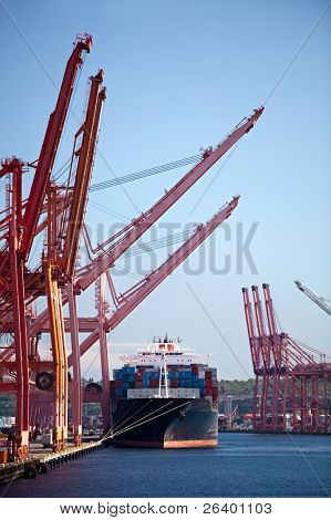 cargo ship in port - large container ship docked