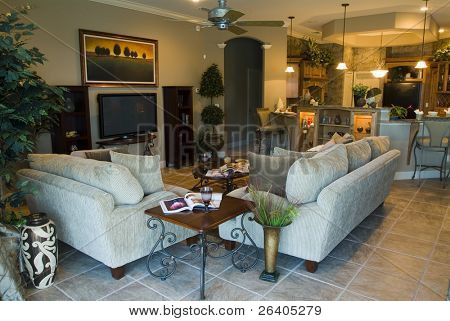 Contemporary living room home interior design lifestyle