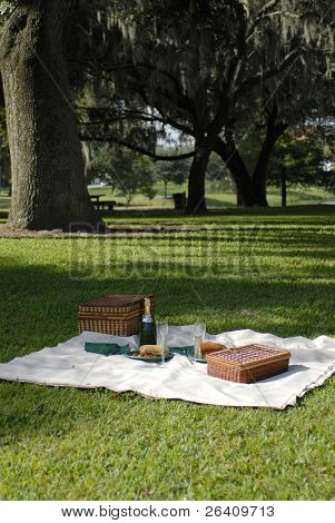 Picnic food in the green city park