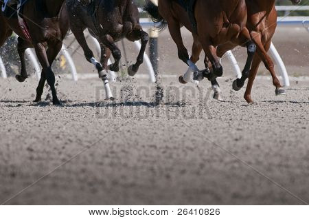 Exciting motion blur of speeding race horses