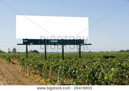 Blank Billboard in a vineyard off the freeway