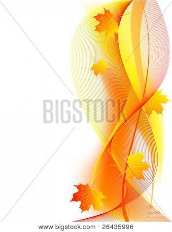 vector of beautiful  autumn card
