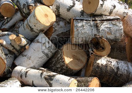 piles firewood background