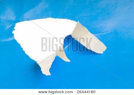 lacerated paper with hole for background