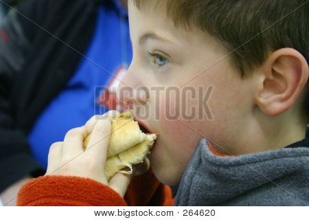 Boy Eating Hotdog