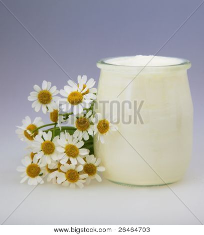 Yogurt With Chamomile Flower