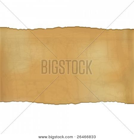 Fragmentary Paper, Vector Illustration