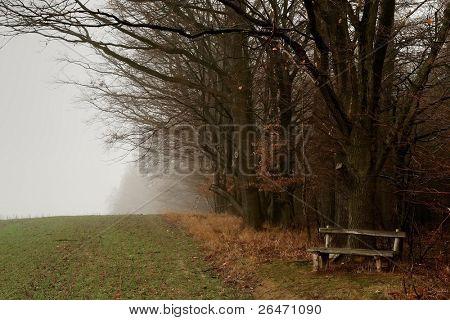 Derelict bench
