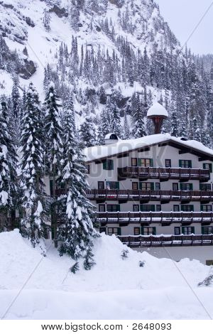 Hotel In Snow Vertical