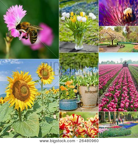 Collage of beautiful gardens in spring
