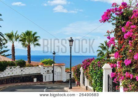 Street In Los Gigantes, Tenerife.