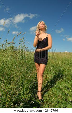 Beautifull Girl In Fancy Black Dress Stands In Meadow