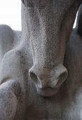Detail Of Horse Sculpture