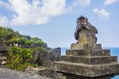 Monkey Eating At The Uluwatu Temple In Bali, Indonesia poster