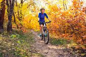 Biking In The Forest. Girl Rides A Bike On A Forest Trail. Woman Riding Her Bike In The Park. Bicycl poster