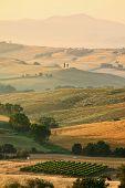 Постер, плакат: Ландшафт сельской местности региона Тоскана Италия