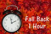 Daylight Savings Time Message, Some Fall Leaves And Retro Alarm Clock With Text Fall Back 1 Hour poster