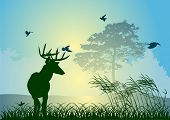 illustration with single deer in forest