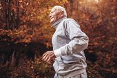 Senior Runner In Nature. Elderly Sporty Man Running In Forest During Morning Workout. Healthy And Ac poster