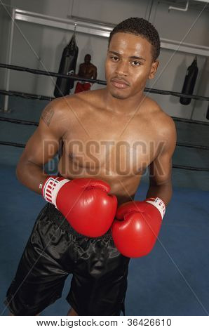 Portrait of a boxer ready for a fight in the boxing ring