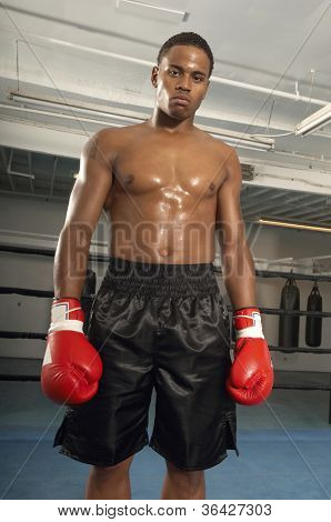 Portrait of a serious male boxer wearing red gloves standing in gym