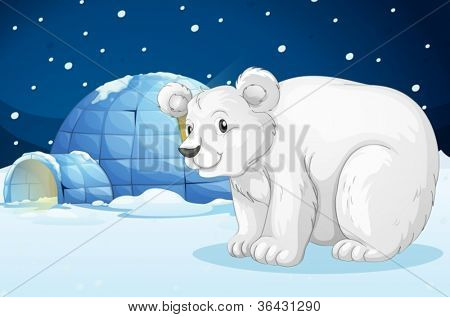 illustration of a Egloo and bear in a beautiful night