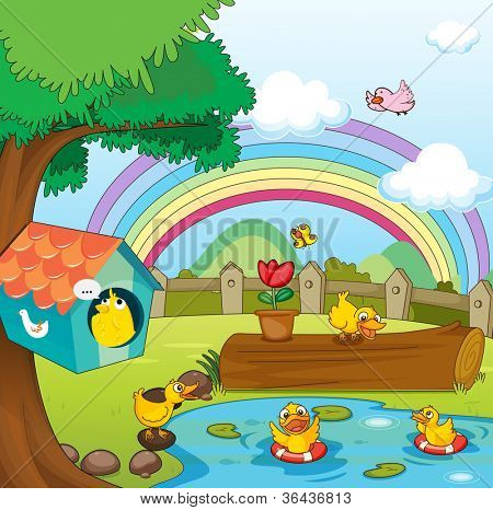 illustration of birds in beautiful garden and rainbow
