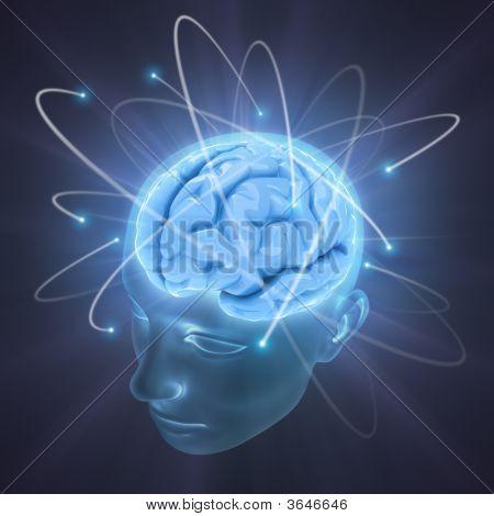 Cérebro vivo
