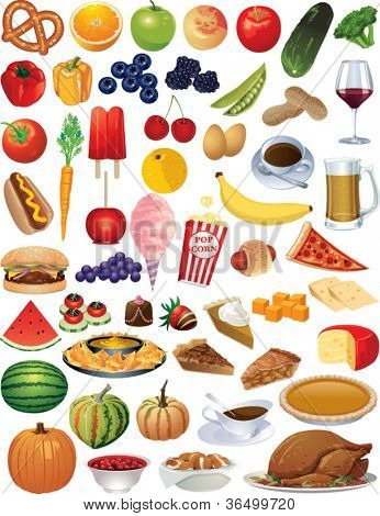 A collection of vector food items