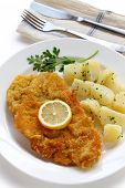 stock photo of wieners  - wiener schnitzel - JPG