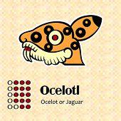 picture of ocelot  - Aztec calendar symbols  - JPG