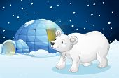 foto of igloo  - illustration of a white bear and igloo in dark night - JPG
