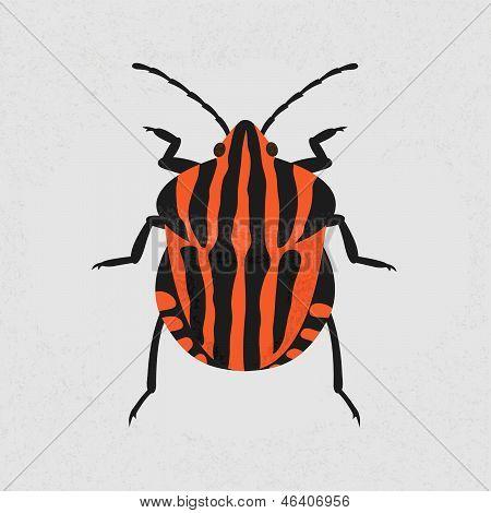 shield bug , eps10 vector format