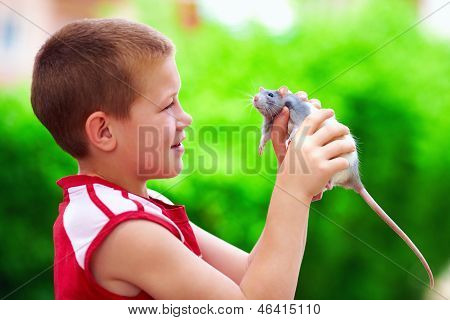 Teenage Boy Playing With Rat Pet