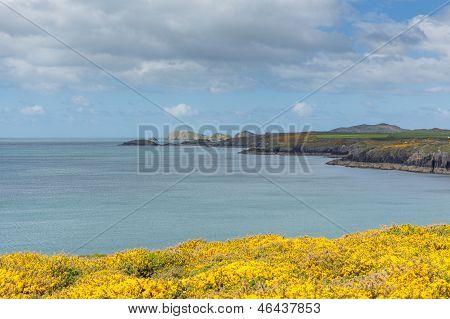 St Brides Bay St Non`s Wales