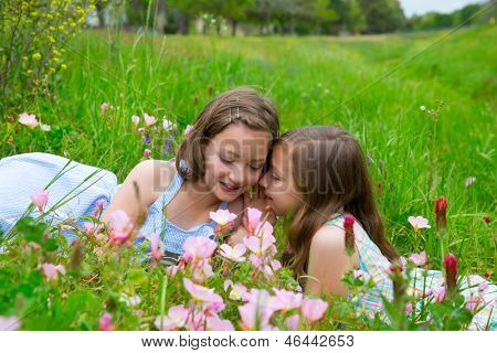 twin sisters friends whispering ear on spring poppy flowers green meadow
